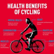 תועלות בריאותיות מרכיבה על אופניים